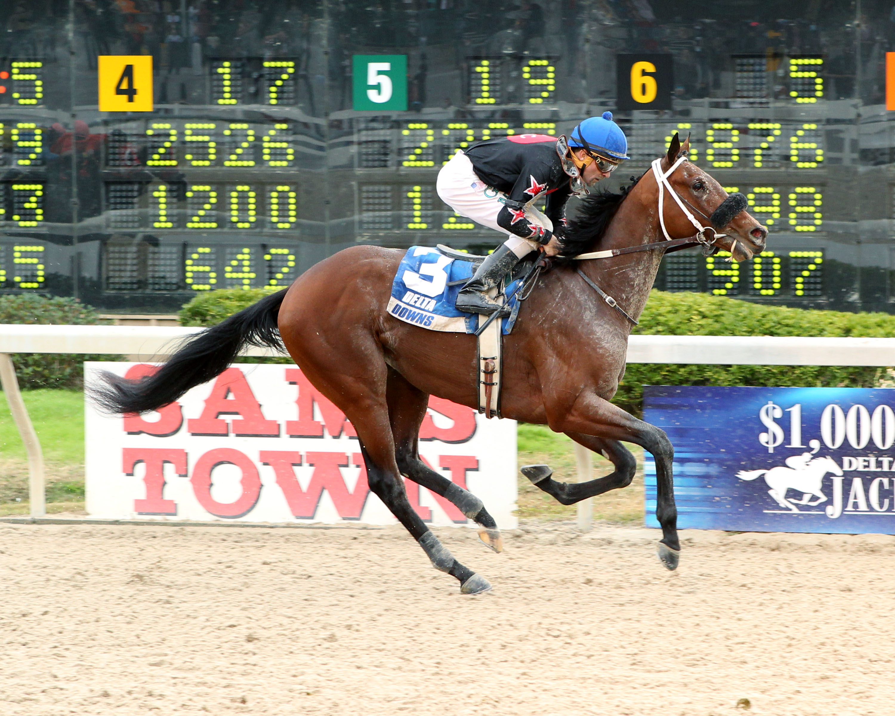 FOUR LEAF CHIEF - The 6th Running of Louisiana Legacy Stakes - 11-22-14 - R03 - DED -Finish