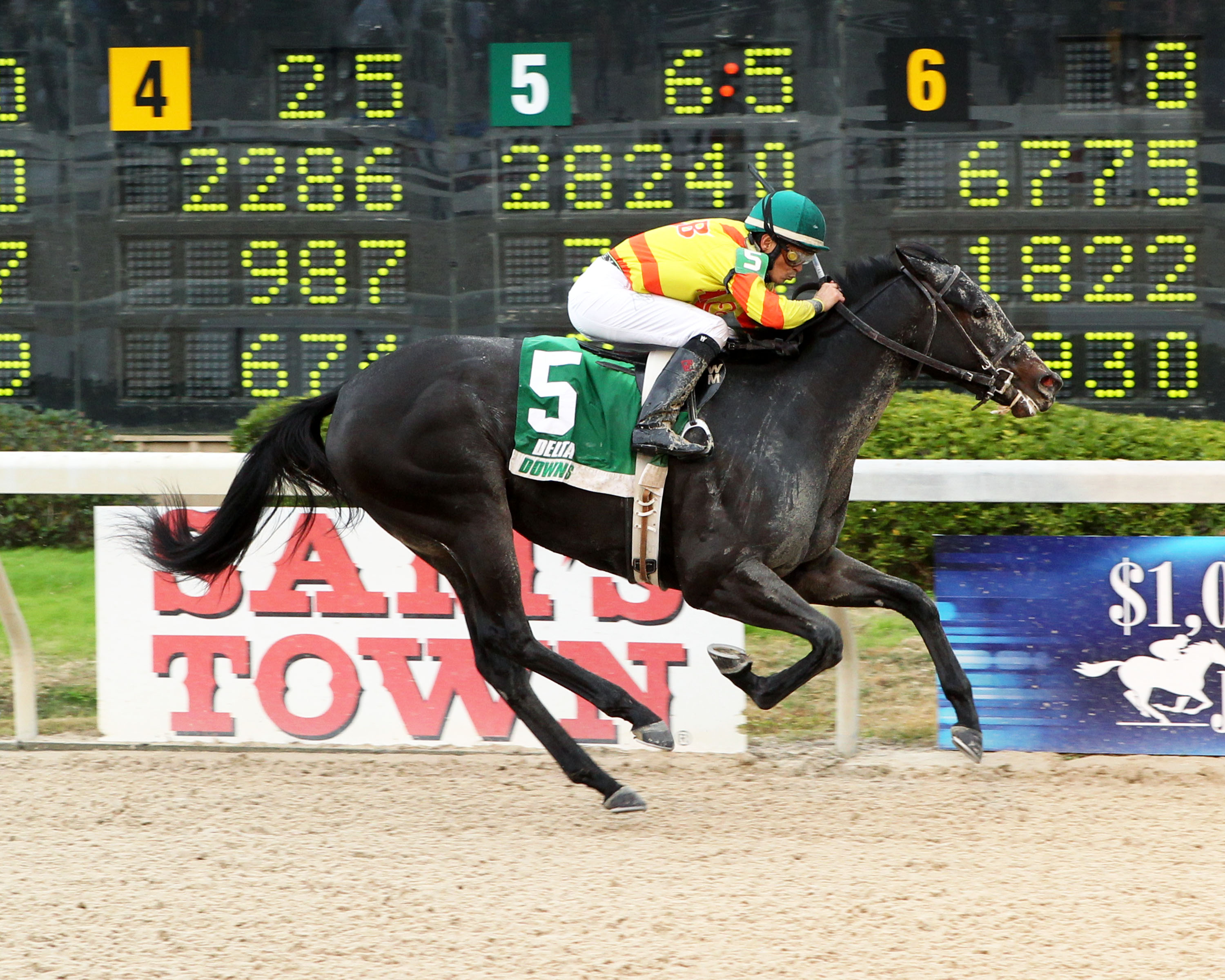 WIND CHILL FACTOR - The 6th Running of Louisiana Jewel - 11-22-14 - R04 - DED - Finish